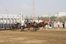 Мероприятия по конным скачкам посвящённое Дню Президента Республики Таджикистан и Году молодёжи