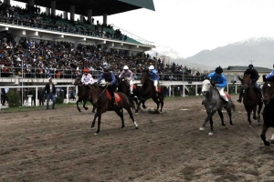 Horse Racing Event. Navruz