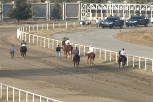 Competition on horse races dedicated to the Day of the President of the Republic of Tajikistan